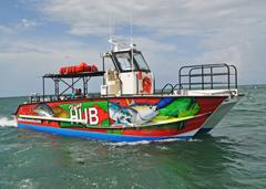 September 2, 2016: Metal Shark Delivers New Foil-Assisted Catamaran Excursion Vessel