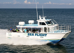 September 16th, 2019: Metal Shark Delivers New Foil-Assisted Catamaran Excursion Vessel to Pure Florida